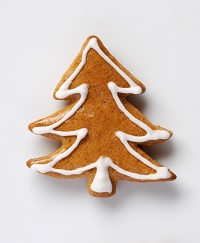 tree biscuit